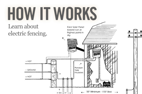 How it Works: Learn about electric fencing